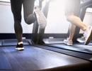 Tập thể dục đúng lúc sẽ  tăng cường trí nhớ