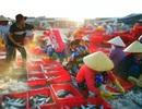 Biển Việt Nam toả sáng lộng lẫy trong cuộc thi du lịch đỉnh nhất năm