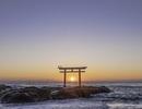 Đến Ibaraki không chỉ để xem, mà còn để cảm nhận tinh thần Nhật Bản