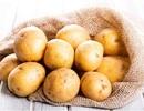 Hiểu đúng về tác dụng và cách sử dụng khoai tây