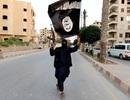Thủ lĩnh cấp cao của IS tại Syria có thể đã bị tiêu diệt
