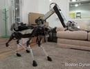 Kinh ngạc về mẫu robot có thể làm được việc nhà