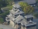 Động đất ở Nhật Bản làm đổ sụp tường lâu đài 400 năm tuổi Kumamoto