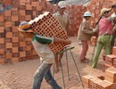 VN có khoảng 1,75 triệu lao động trẻ em
