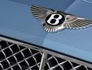 Bạn có biết ý nghĩa của các thương hiệu ôtô? (P.2)