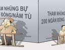 """Chuyện """"vu vạ vinh quang"""" và 200 ngàn = 25 tỉ và… 1 năm tù!"""
