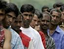 434 lao động bất hợp pháp trong một nhà hàng ở Malaysia bị bắt