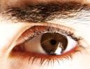 Những thực phẩm giúp bảo vệ mắt