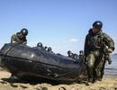 Nhật Bản học được gì ở lính thủy đánh bộ Mỹ?