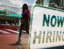 Thị trường lao động Mỹ tốt nhất 43 năm: Niềm vui có kéo dài?