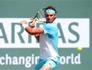 Nadal tranh vé vào chung kết với Djokovic