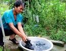 """""""Nước và Việc làm"""" đều có sức mạnh thay đổi cuộc sống con người"""