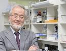 Nobel y học 2016 vinh danh nhà khoa học Nhật Bản Yoshinori Ohsumi