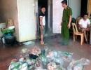 Hà Nội: Thu giữ 5 tấn nội tạng đông lạnh mốc xanh