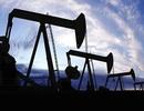 Giá dầu vượt mốc 48 USD/thùng, cao nhất trong 6 tháng
