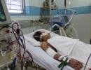 TPHCM: Thêm một bệnh nhân tử vong, sốt xuất huyết gia tăng nhanh