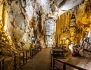 Phong Nha Kẻ Bàng nằm trong top 7 vườn quốc gia nên ghé thăm ở Đông Nam Á