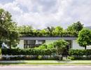 """Chiêm ngưỡng ngôi nhà với """"vườn cây trên mái"""" độc đáo ở Nha Trang"""