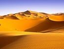 Sa mạc Sahara đã trở nên khô cằn như thế nào?