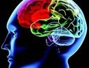 Thuốc khôi phục tổn thương não ở bệnh nhân đột quỵ
