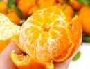 Vitamin C có thực sự ngăn ngừa cảm lạnh?