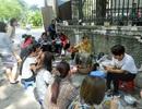 """""""Văn hóa"""" bệt trong ẩm thực đường phố Hà Nội"""