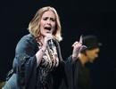 """Tạm thời """"gác mic"""", Adele mong làm cô giáo"""