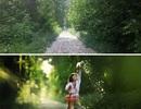 Sự khác nhau về một bức ảnh tại cùng một địa điểm
