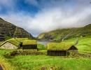 Những ngôi nhà phủ cỏ xanh đẹp chưa từng có