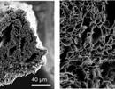 Sử dụng lò vi sóng để sản xuất graphene chất lượng cao