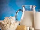 Sữa nguyên kem giúp giảm nguy cơ béo phì