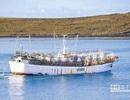 Cục quản lý lao động ngoài nước ra công văn khẩn về việc thuyền viên bỏ trốn