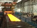 TS Lê Đăng Doanh: Làm nhà máy thép Hoa Sen - Cà Ná phải hi sinh quá nhiều!