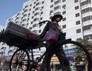 Thu nhập bình quân của người Việt đạt gần 50 triệu đồng/năm