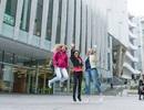 Hội thảo du học New Zealand: học phổ thông - cao đẳng- đại học