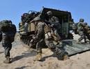 Mỹ - Hàn tập trận: Tình hình bán đảo Triều Tiên căng như dây đàn