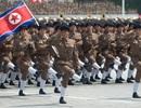 Rộ tin đồn Triều Tiên đưa lực lượng tham chiến tới Syria