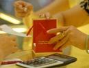 Tỷ giá trung tâm cao nhất 1,5 tháng, vàng tăng giá