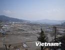 Năm năm sau thảm họa kép tại Nhật Bản, khó khăn vẫn chồng chất