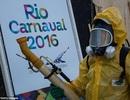Vi rút Zika đe dọa thế vận hội Olympic