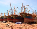 """Ngư dân đòi tháo bỏ thép Trung Quốc, công ty """"năn nỉ"""" chắp vá"""