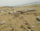 """7 kilomet bờ biển bị dầu vón cục """"tấn công"""""""