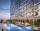 Đà Nẵng: Từ bùng nổ khách sạn cao cấp tới con số lợi nhuận trong mơ