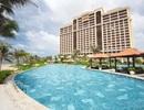 Mùa hè lý tưởng tại Resort phức hợp hàng đầu Việt Nam