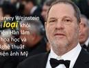 """Hàng loạt đòn giáng mạnh xuống """"kẻ tội đồ"""" quấy rối ở Hollywood"""