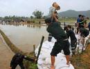 Bình Định: Thanh niên xắn quần, lội ruộng giúp dân khắc phục hậu quả lũ