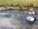 """Xả nước """"cứu"""" rừng khiến hàng nghìn ha nông nghiệp bị ảnh hưởng"""