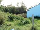Cà Mau: Mười năm, 5 đoàn kiểm tra vẫn không giải quyết xong một vụ tranh chấp đất!