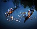 Những hình ảnh xuất sắc của nhiếp ảnh gia Việt đăng trên National Geographic