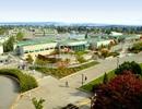 """Đại học Vancouver Island, nơi """"tầm sư học đạo"""" của học viên hơn 90 quốc gia"""